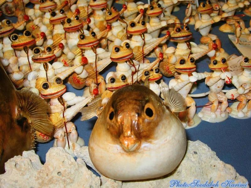 Sea Band!!??