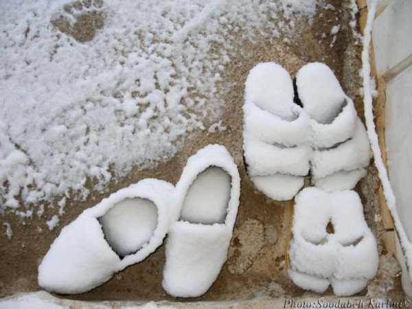 We Miss The Warm Feet!