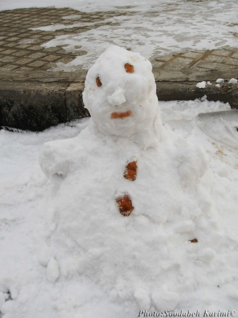 Snowy Family(1)#Snow Baby