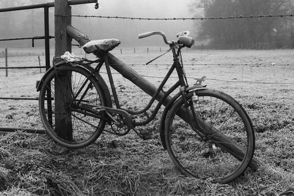 The fog & the bike