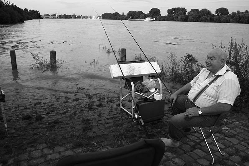 High tide river Rhine [2]