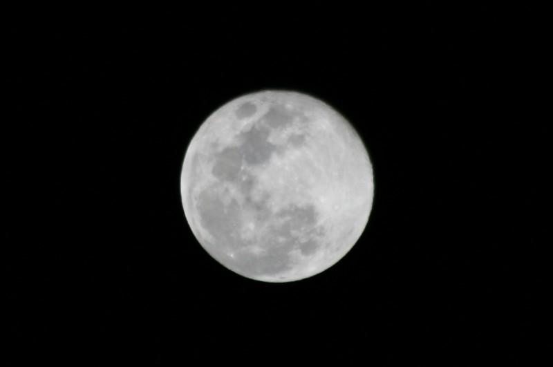 Luna de Enero