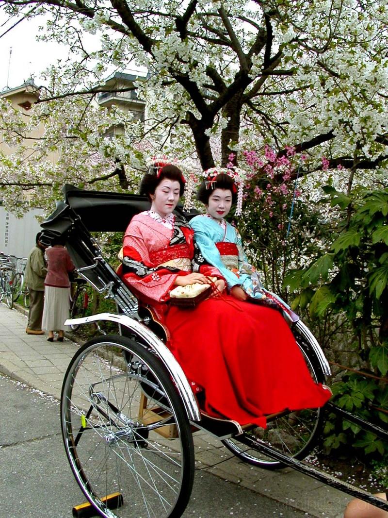 Maiko in a rickshaw