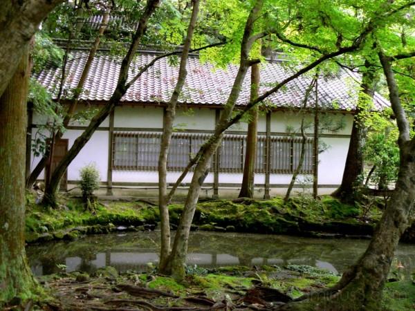 Pond at Honen-in