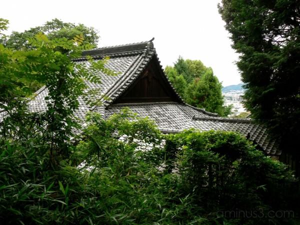 Graceful tile roof
