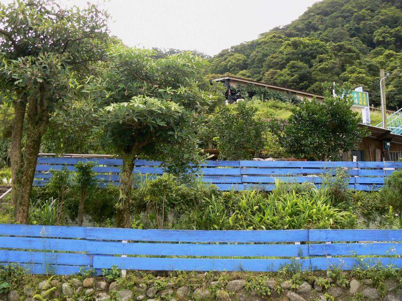 Blue fences