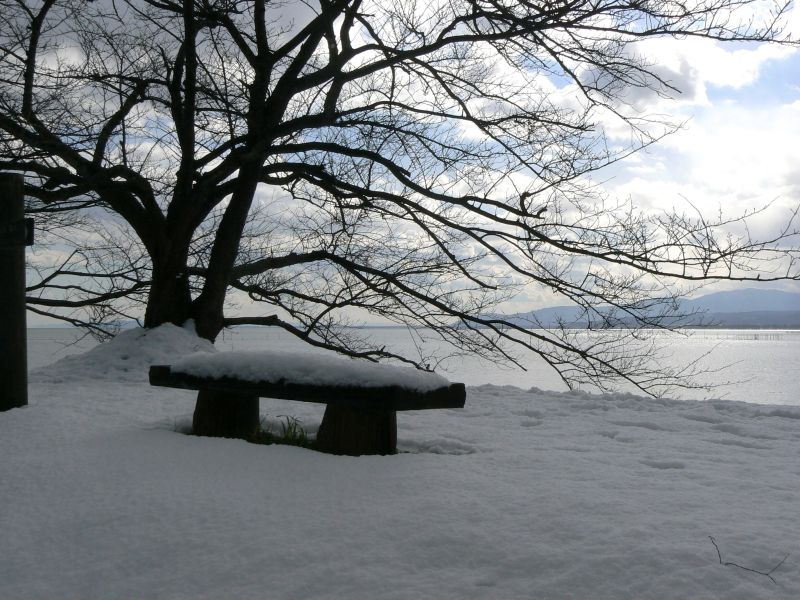 Stone bench in snow