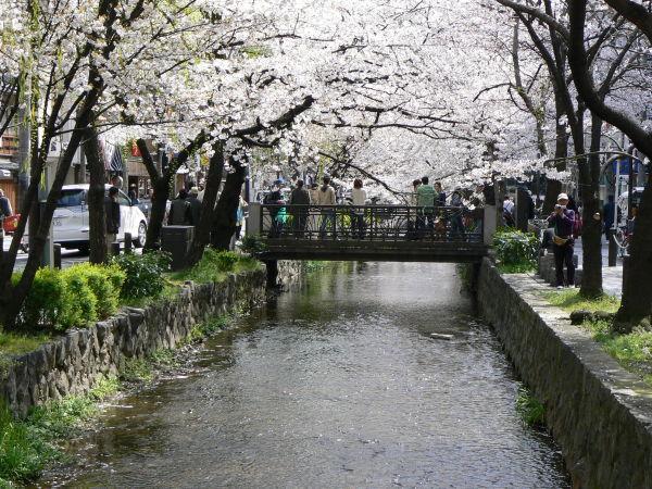 Downtown bridge in Spring