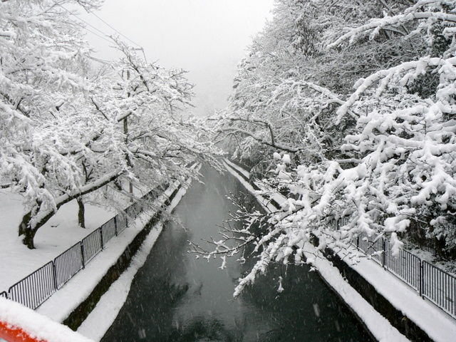 View of canal in snow