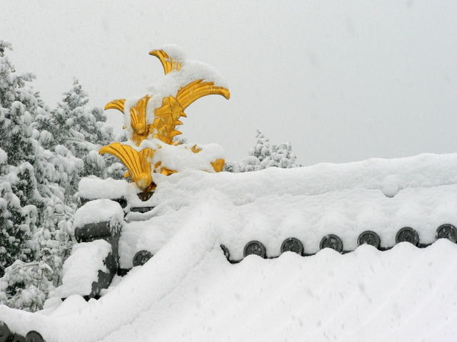 Gold roof end on snow-covered Japanese temple