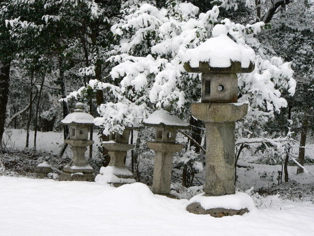 Japanese lanterns in the snow