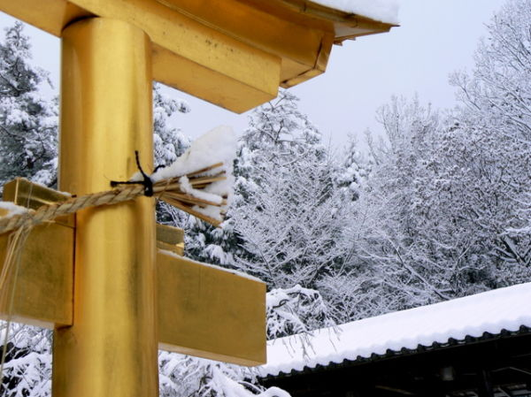 Gold torii at a snowy Japanese temple
