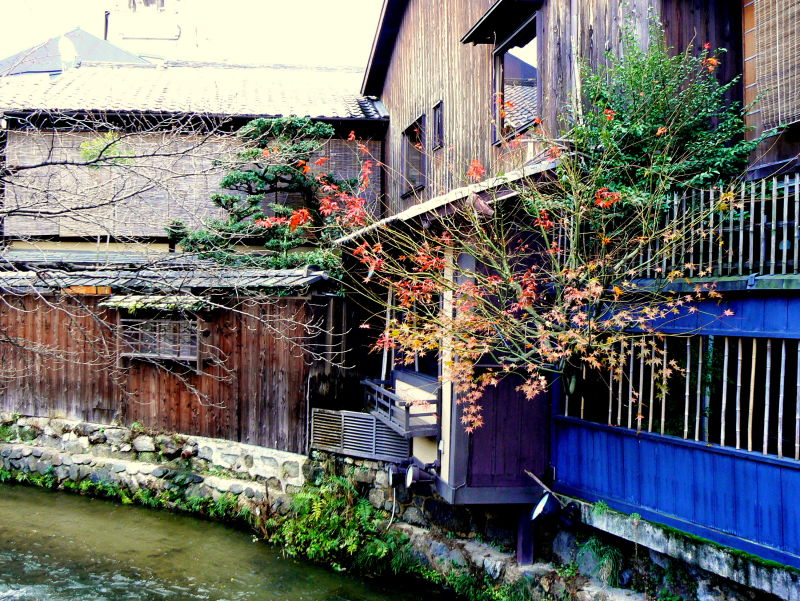 Houses beside the stream in Gion