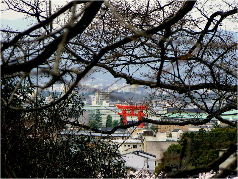 Spring view over Higashiyama in Kyoto