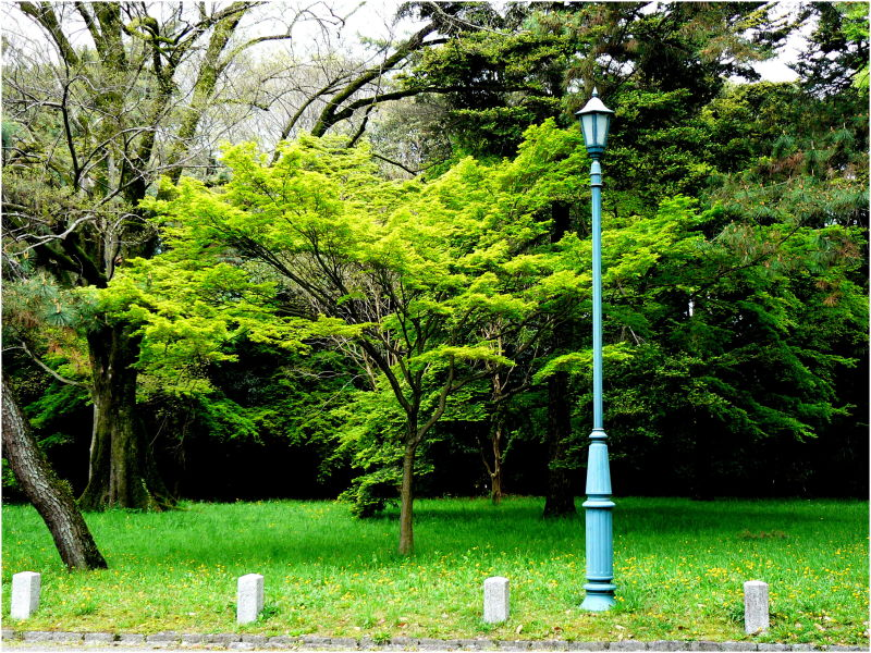 Lamp-post in the park