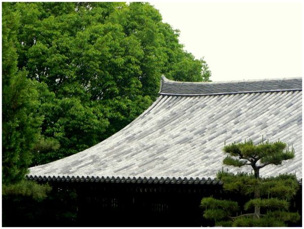 Japanese temple roof with trees