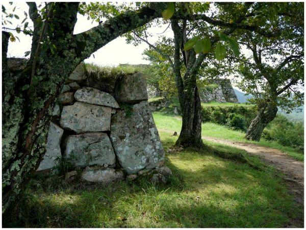 stone walls at Takeda Castle ruins