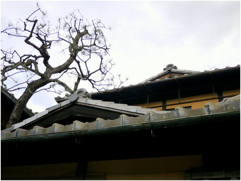 Kyoto rooftop