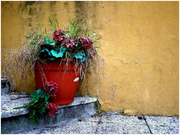 Dead grass and fake flowers in a terracotta pot