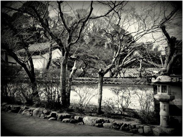 Garden at a Japanese temple