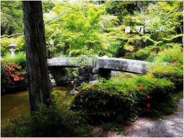 Stone bridge in a Japanese garden