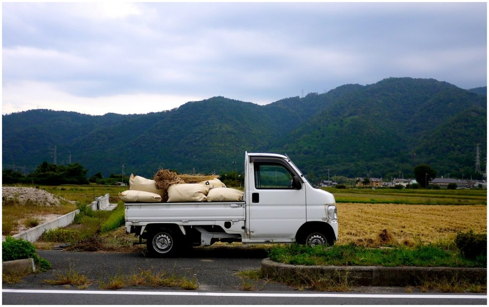 Farmer's truck loaded with rice