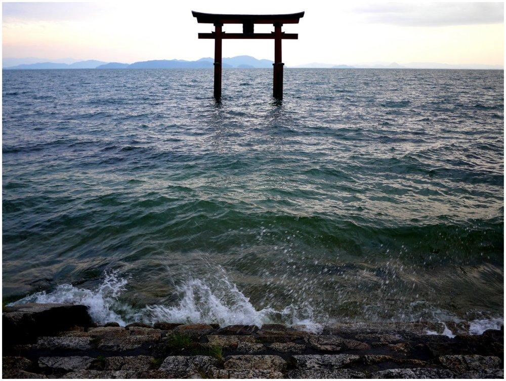 Torii in lake at Shirahige Shrine
