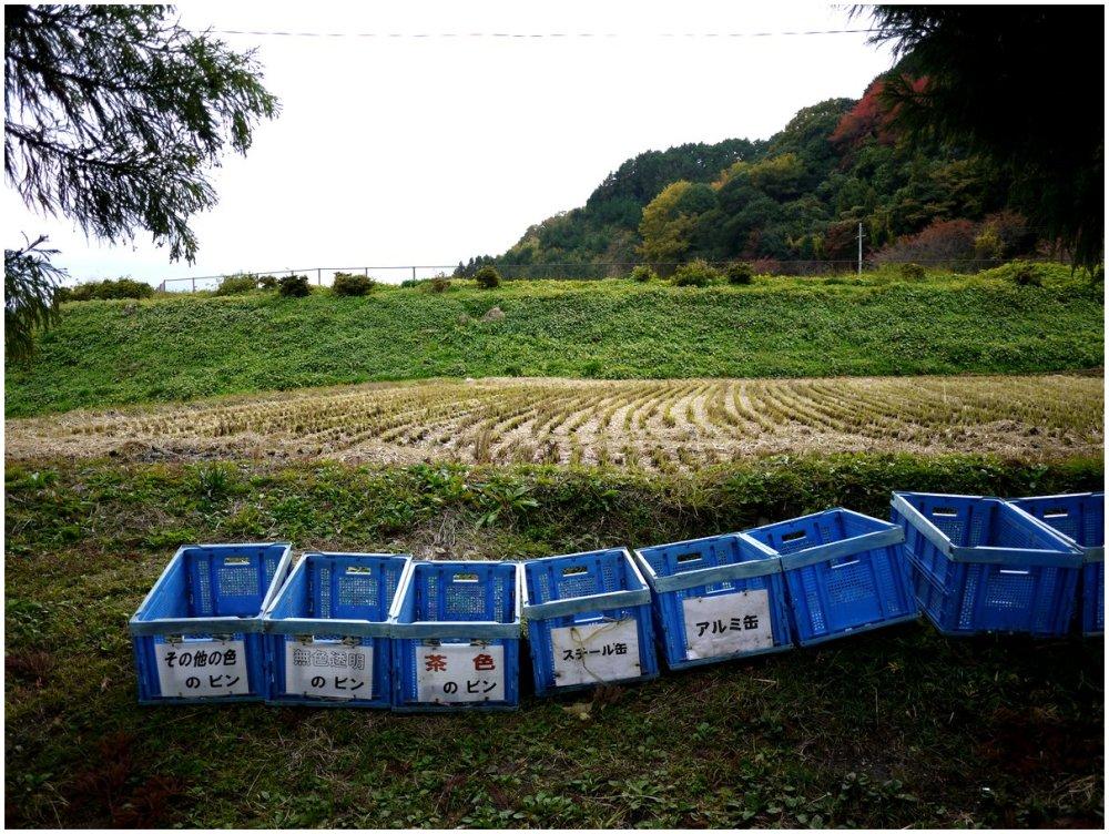 Line of blue bins in a field