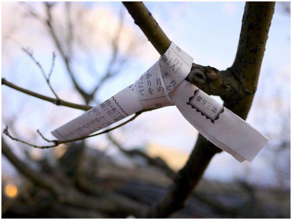 Abandoned fortune paper at Japanese shrine