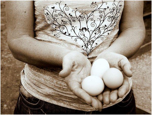 Hands holding three fresh eggs