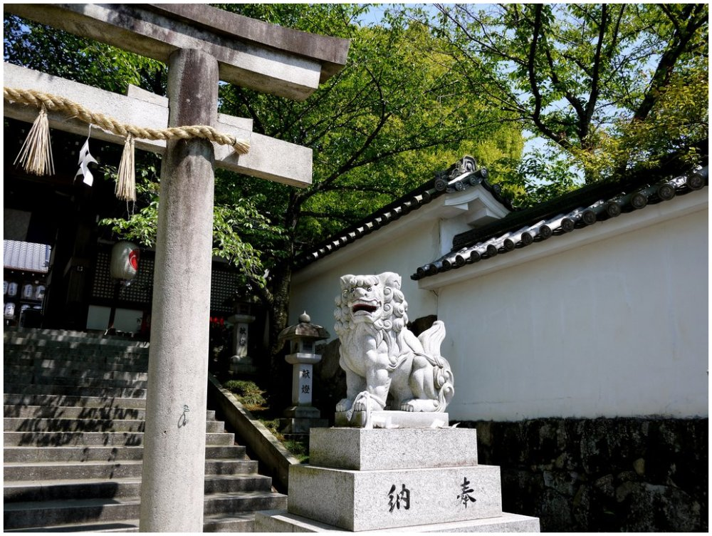 Lion guardian at Japanese shrine