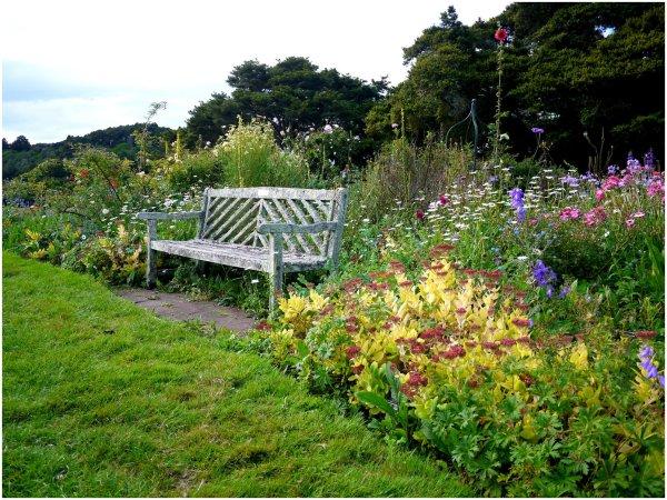 Wooden bench by a border garden
