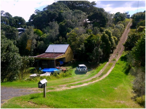 New Zealand country scene