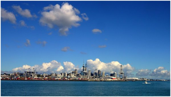 Auckland City from harbour