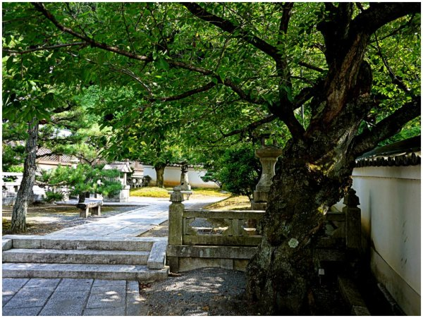 Japanese temple yard