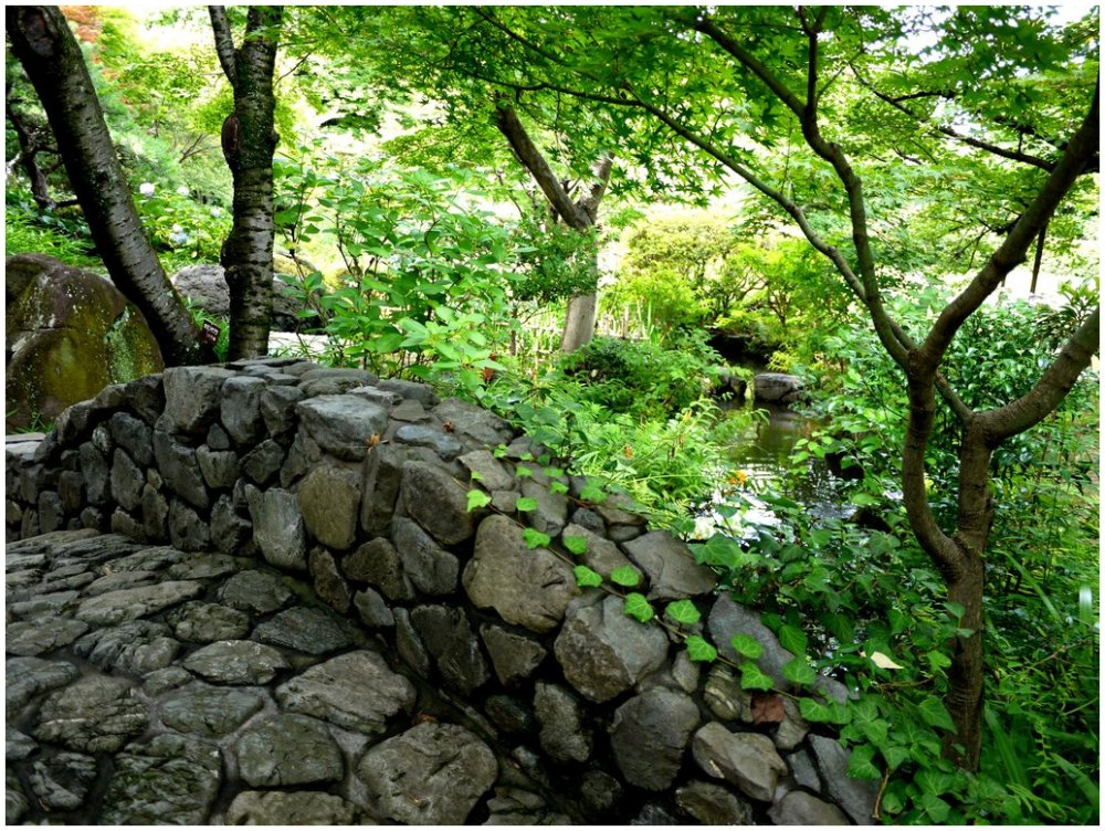Stone bridge in green garden