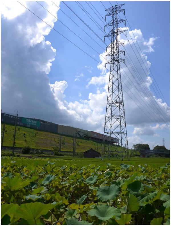 Power pylon against towering clouds