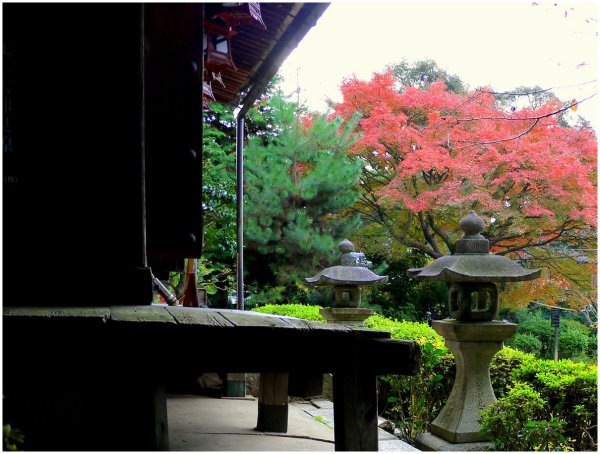 Japanese temple in Autumn