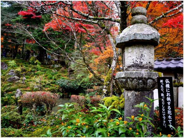 Stone lantern in Autumn