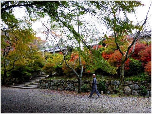 Japanese temple in Autumn