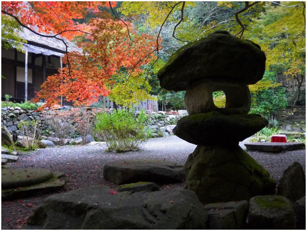 Autumn in a Japanese garden