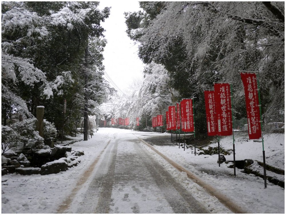 Red banners beside a snowy road