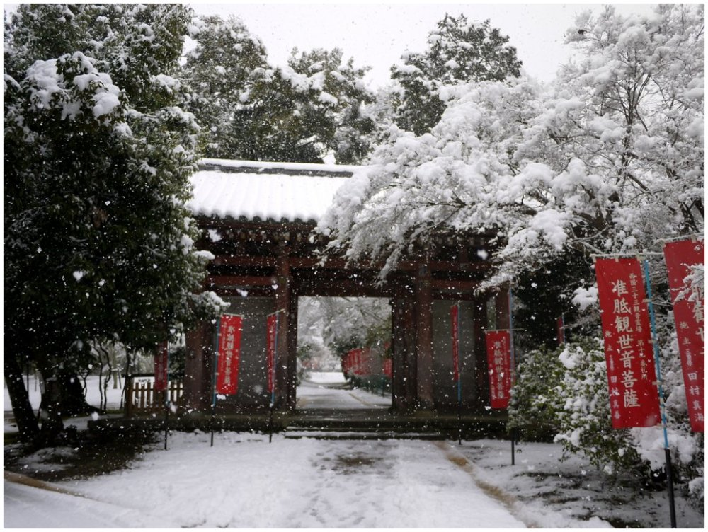Japanese temple gate in snow