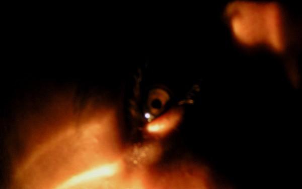 Human in fire light- face