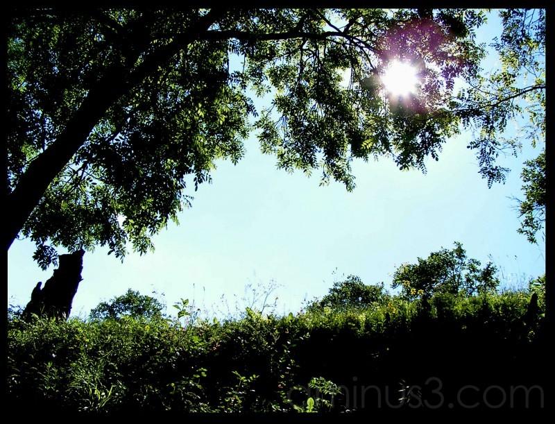 Sun, artistic photo,