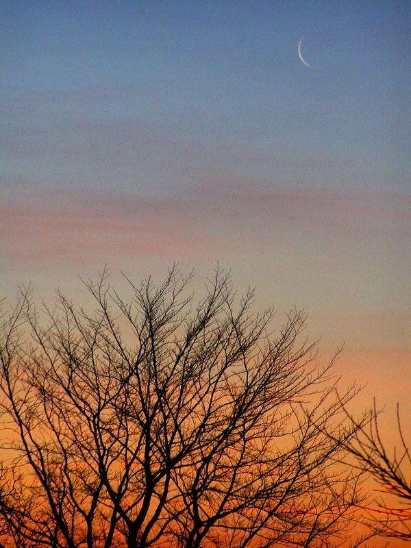 Sun rise, artistic photo