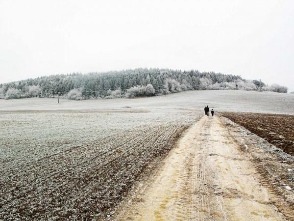Walk in frozen field.