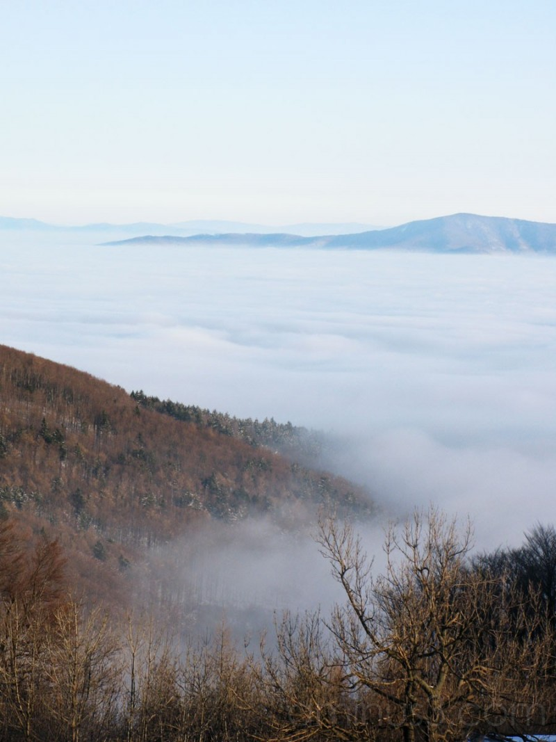 Inversion from Inovec Slovakia