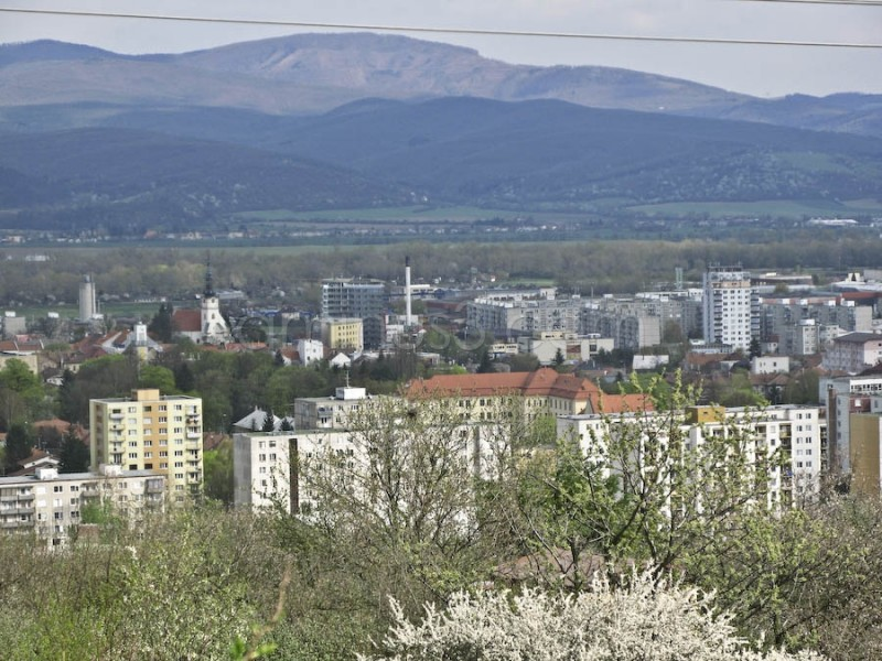 Nove Mesto nad Vahom from a distacn castle.