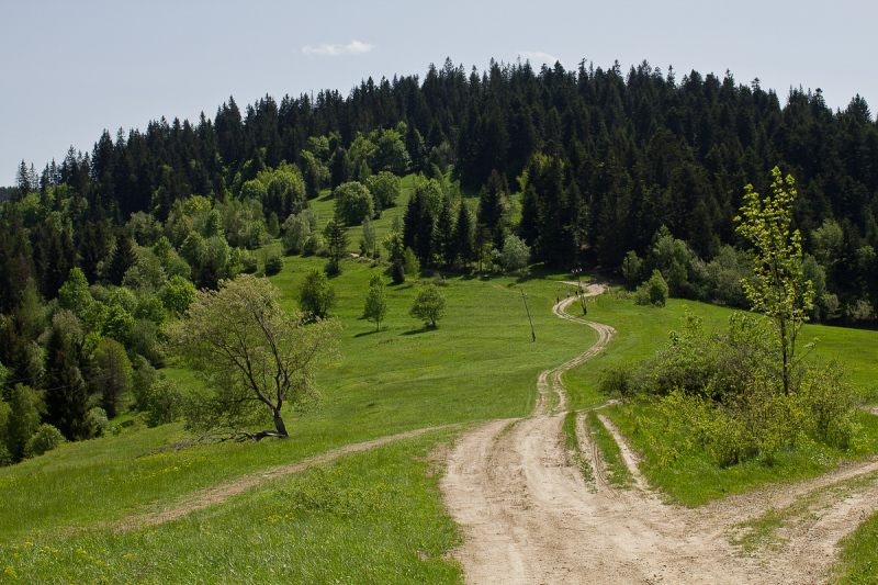 Green hilyi country side in Slovak Republic